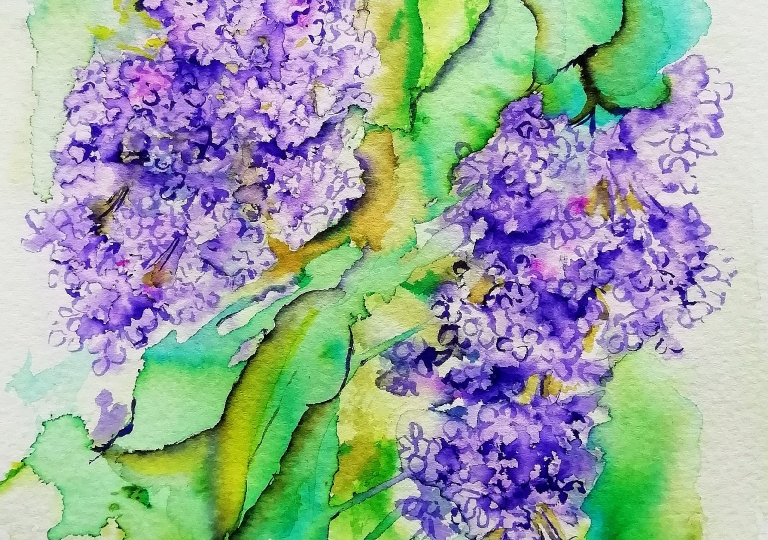 postcards from the garden 2020 , lilac